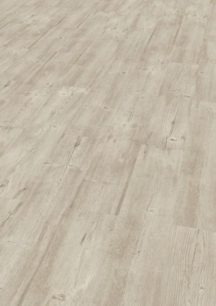 SAMOA Designboden Pinie oregon von KWG zum verkleben